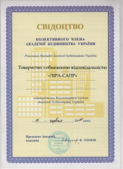 Certificate RAACS (Russian Academy of Architecture and Construction Sciences)